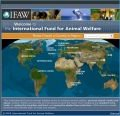 The International Fund for Animal Welfare IFAW